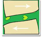 Раскладка лекал на ткани